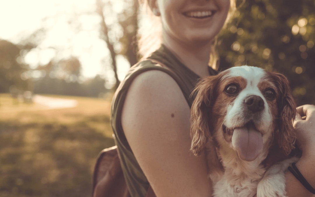 People Who Love Animals More Than People: Psychology of Empathy