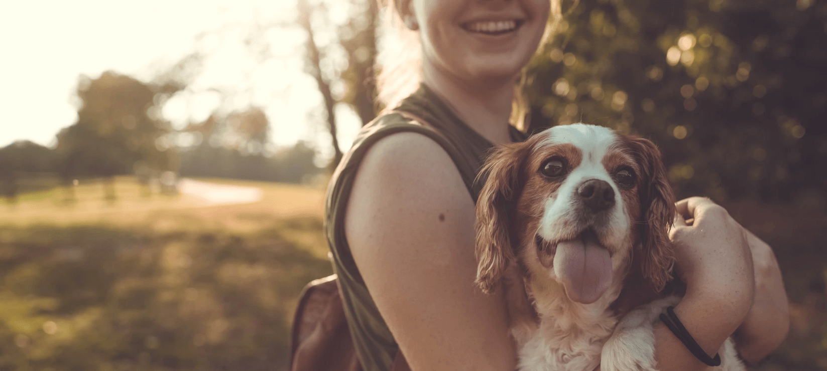 Why Do Some People Show too Much Empathy Towards Animals - calmerry